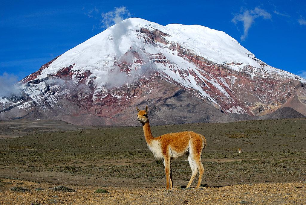10 curiosità sull'Ecuador che (forse) non sapete